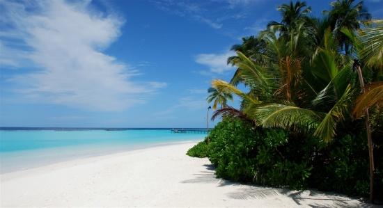 Traumstrand auf einem Malediven Atoll
