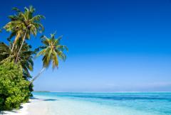 Die Malediven bieten traumhafte Strände und türkisblaues Wasser im Indischen Ozean
