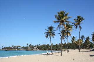 Palmenstrand von Bacuranao