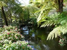 Das grüne Hinterland der Insel Madeira.